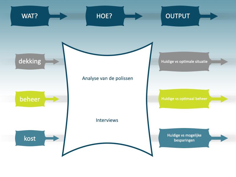 Wat: dekking, beheer en kost. Hoe: analyse van de polissen en interviews. Output: Huidige versus optimale situatie.